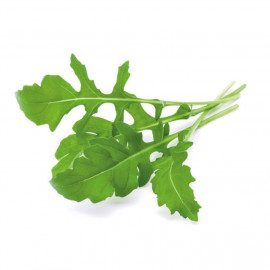 Click and Grow Smart Garden Refill 3 stk. Planter: Arugula