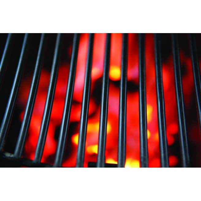 Primo Grill XL 400 All-In-One